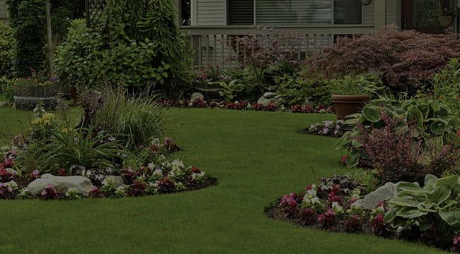 Wheaton Landscape Design